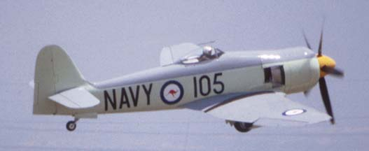 Hawker Sea Fury FB Mk. 11, N260X at Chino 16 years ago