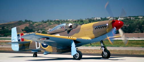 North American P-51D, N151DP Cottonmouth