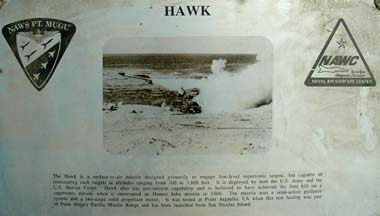 Hawk plaque