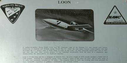 Loon plaque
