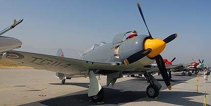 Hawker Sea Fury Mk. 11, N19SF Argonought