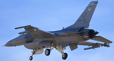 F-16C Block 42E 89-2004 309th Fighter Squadron Wild Ducks