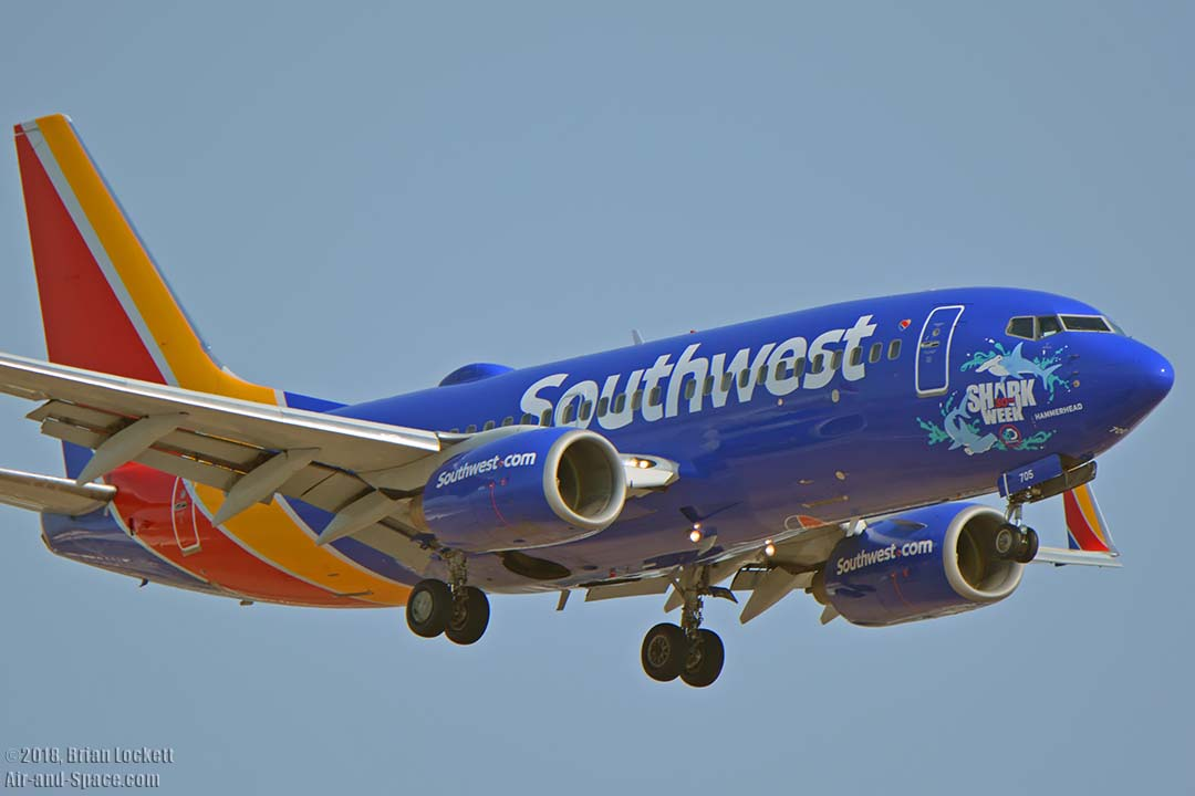 southwest shark week sweepstakes air and space com southwest shark week 737s at phoenix 6251